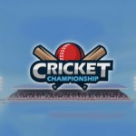 Cricket Championship – coming soon to BMG.